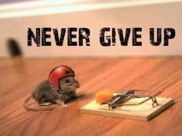 Tak Mudah Menyerah