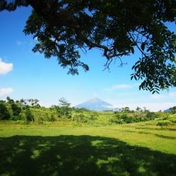Perjalanan menuju Punthuk Silancur bakal disuguhi pemandangan indah (Dok. pribadi)