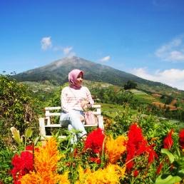 Kamu dapat berswafoto berlatar belakang gunung Sumbing (Dok. pribadi)